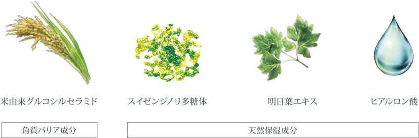 角質バリア成分と天然保湿成分